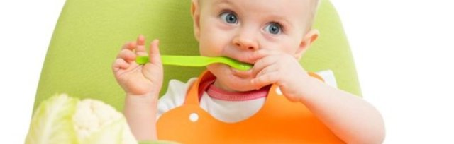 Happy Baby: Making Nutritious Baby Food