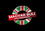 Londoni Magyar Buli
