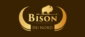 Bison du Nord