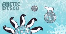 Arctic Disco