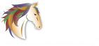 Equine Connection - The Academy of Equine Assisted Learning Inc