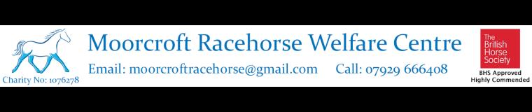 Moorcroft Racehorse Welfare Centre