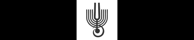 Freunde des Israel Philharmonic Orchestra