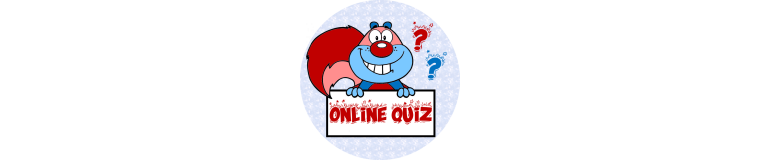 Squizzle Quizzes