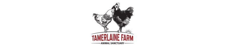 Tamerlaine Farm Animal Sanctuary
