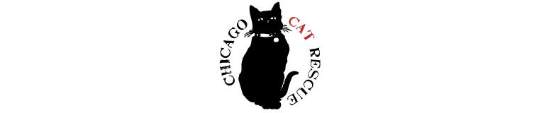 Chicago Cat Rescue