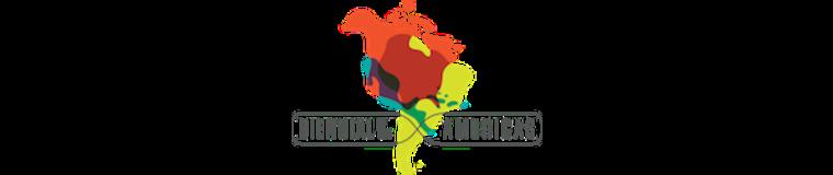 Biennial of the Americas