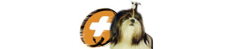 Shih Tzu Rescue, Inc.