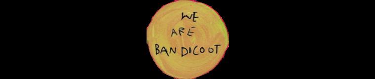 We are Bandicoot
