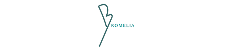 Bromelia Travel | Brazil Travel Specialists