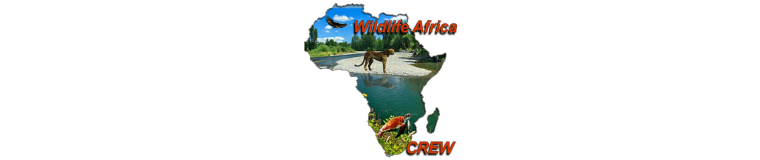 Wildlife of Africa Conservation Initiative