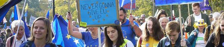 Dorset For Europe