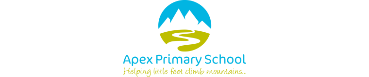 Apex Primary School