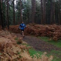Guided Trail Run High Lodge image