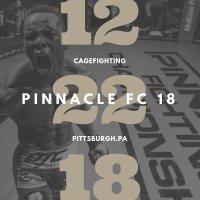 Pinnacle FC 18 image