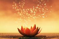 THE MAGIC OF MEDITATION image