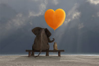 THE BUDDHIST WAY OF LOVING KINDNESS  - RETREAT image