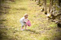 7th Annual Easter Egg Hunt image