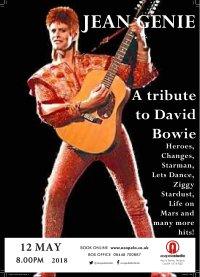 Jean Genie - David Bowie Tribute image