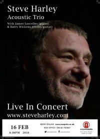 Steve Harley Acoustic Trio image