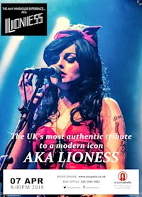 The Amy Winehouse Experience - AKA The Lionness image