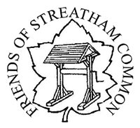 Friends of Streatham Common annual Christmas Quiz image