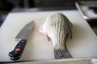 Culinary Competencies: Fish Fabrication + Cookery image