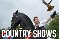 St Albans Town and Country Show & Festivals of Dogs image