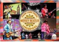 The Mersey Beatles image