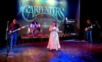 The Carpenters Experience image