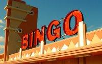 Sneaky Bingo image