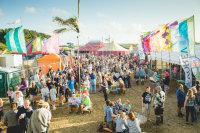 Little Orchard Cider & Music Festival 2017 image