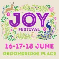 Joy Festival - VIP Camping image