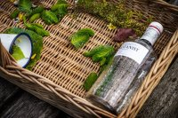 Wild Cocktail Masterclass: Foraging with Carousel and The Botanist image