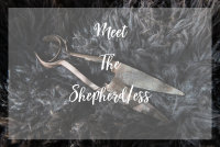 Meet The Shepherd/ess image