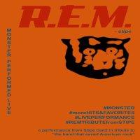 REM - STIPE image