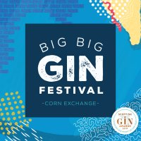 Big Big Gin Festival image