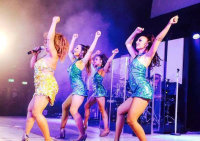Tina Turner Tribute and her Dancers - Kingshurst image