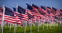Flags for Heroes - 2018 image