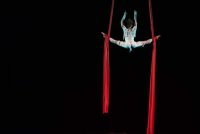 Pitch'd Gala Cabaret - Pitch'd Circus Arts Festival: Evening Show Times 8pm image