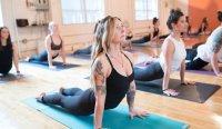 Hawkes Bay Yoga Festival image