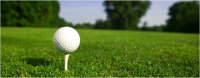 Golf Registration and Donations image