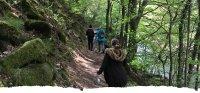 Xcite Autumnal Walk image
