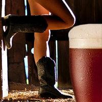 Visalia's Barnyard Bash Pub Crawl image