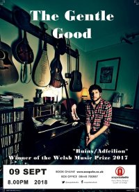 The Gentle Good (Gareth Bonello) image