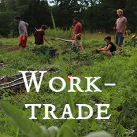 Worktrade image