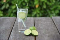 Gin at the House & Gardens image